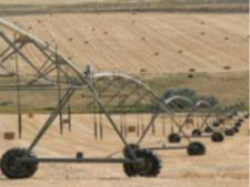 土壤保湿剂-播种保水剂-东保化工