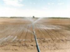泥土保湿剂-泥土固着剂-东保化工