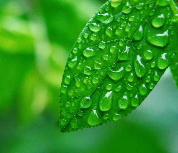 水处理药剂-污水处理剂-聚丙稀稀酰胺絮凝剂-东保絮凝剂