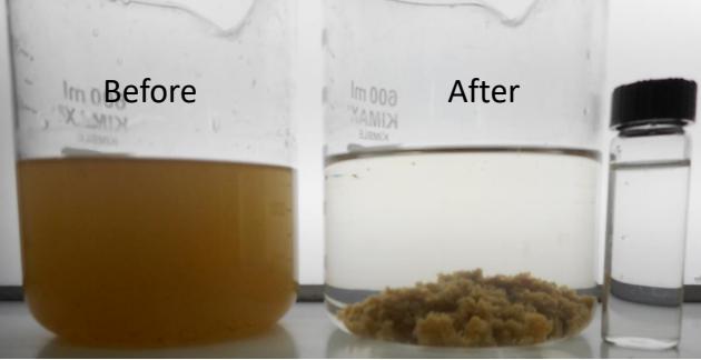 养殖场废水处理药剂-养猪废水处理剂-东保污水处理剂